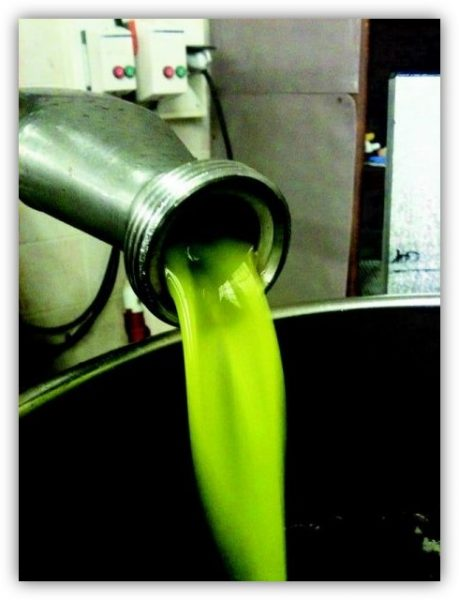Conseils de conservation de votre huile