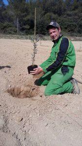 Pour une plantation réussie